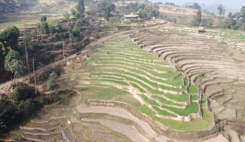 Land for sale in Thansing, Nuwakot