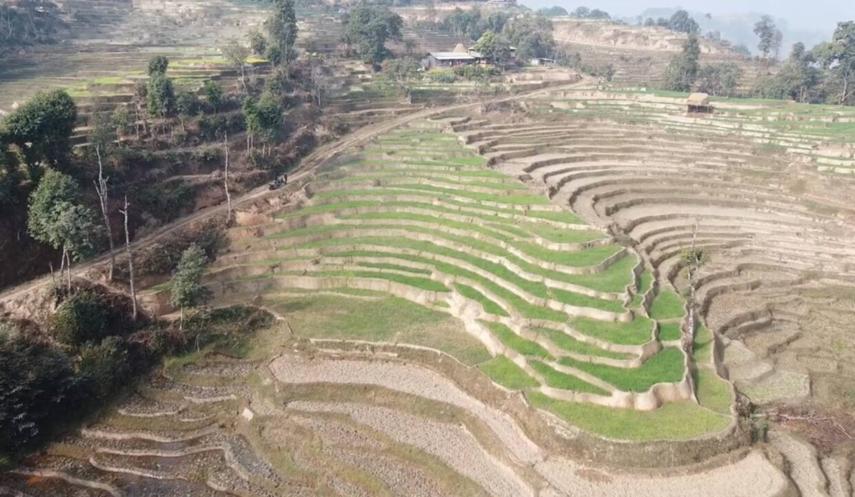 Land for sale in Nuwakot1