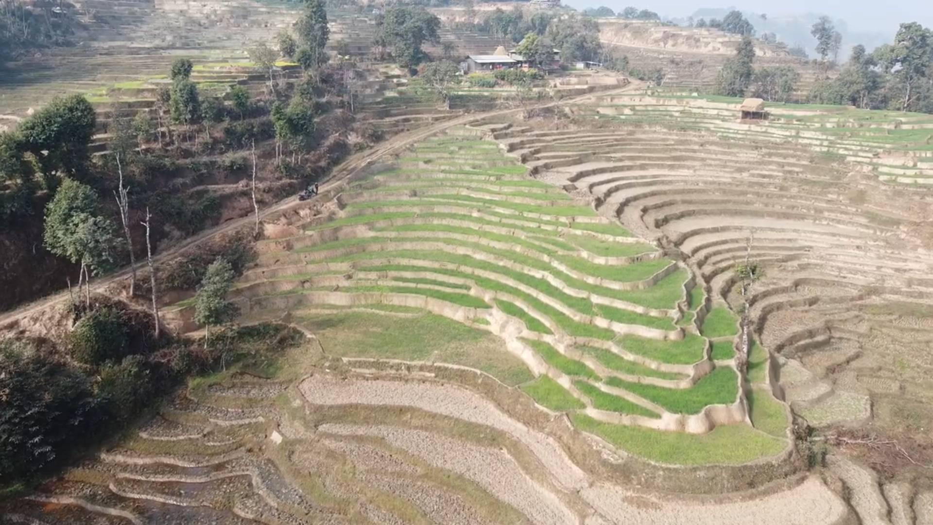 Land Sale in Nuwakot (Thansing)